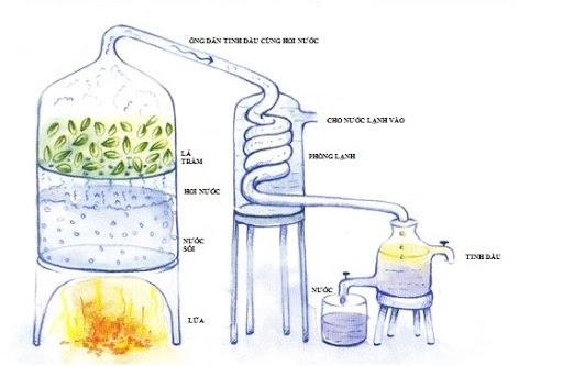 Phương pháp nghiền ép tinh dầu: Đây là phương pháp đơn giản và dễ thực hiện nhất, bằng cách sử dụng máy ép nghiền nguyên liệu. Túi chứa tinh dầu li ti trong vỏ ngoài nguyên liệukhi bị tác động một lực sẽ vỡ ra, cho ra hỗn hợp tinh dầu . Nguyên liệu thường được dùng là các loại họ cam quýt như bưởi, cam, chanh. Sau khi ép xong, hỗn hợp tinh dầu có lẫn nước và cặn. Sử dụng thiết bị tách ly tâm tinh dầu để lấy được tinh dầu nguyên chất cũng như loại bỏ những cặn bã còn sót lại. Phương pháp ép còn được gọi là ép lạnh, không dùng nhiệt để lôi cuốn tinh dầu. Ψ Tinh dầu được chiết suất bằng phương pháp ép lạnh có mùi thơm tự nhiên, giống với mùi vỏ quả tươi